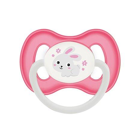Пустышка Canpol Babies Bunny and Company симметричная 6-18месяцев Розовая