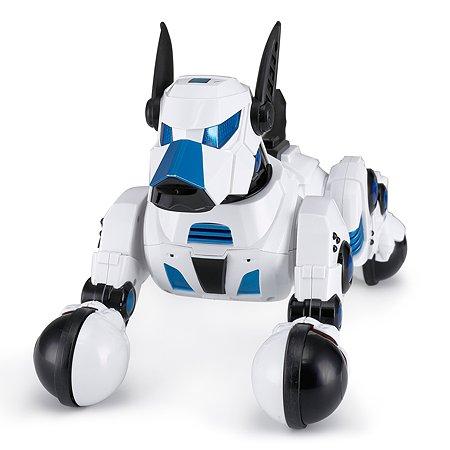 Робот Rastar Умная собака Белая 77900