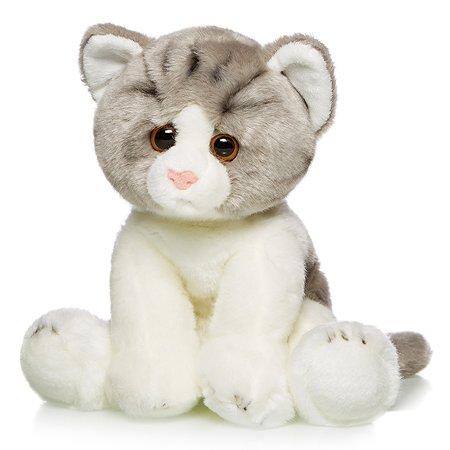 Котик MaxiLife в ассортименте