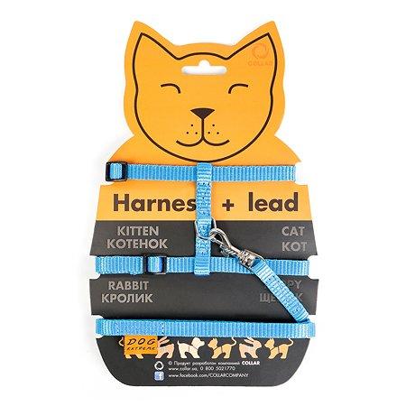 Шлея для кошек Dog Extreme с поводком Синяя 42852