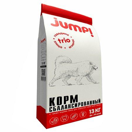 Корм для собак Jump! Trio ягненок-говядина-птица 13кг