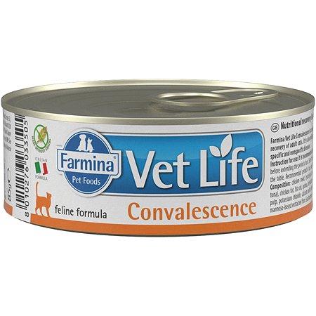 Корм влажный для кошек Farmina VetLife конвалесценсе 85г паштет