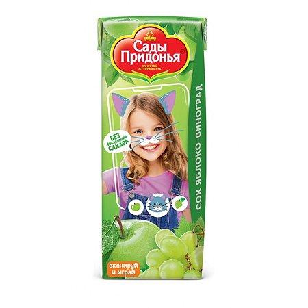 Сок Сады Придонья яблоко-виноград 0,2л с 6 месяцев