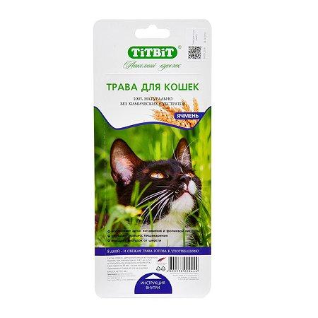 Лакомство для кошек TITBIT Трава ячмень 60 г