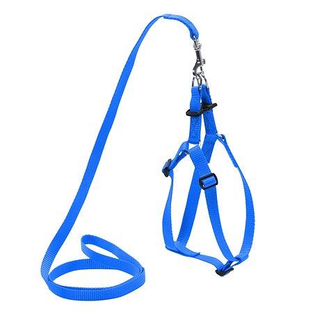 Шлея для собак Dog Extreme регулируемая с поводком Синяя 07022