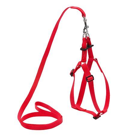 Шлея для собак Dog Extreme регулируемая с поводком Красная 07033