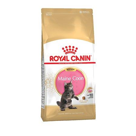 Корм сухой для котят ROYAL CANIN Maine Coon 10кг породы мейн-кун