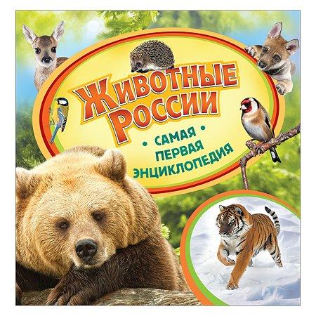 Энциклопедия Росмэн Животные России
