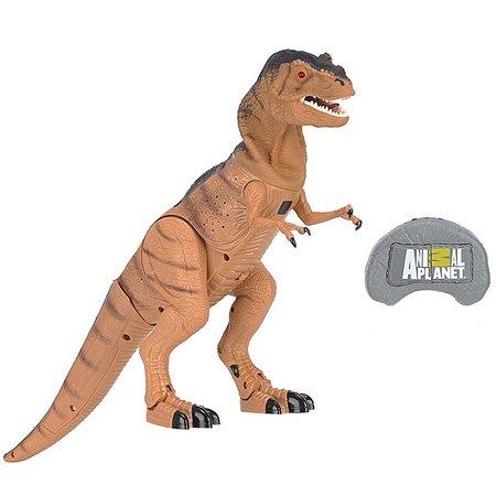Динозавр на р/у Animal Zone T-REX