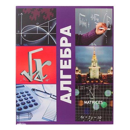 Тетрадь тематическая Мировые тетради Алгебра Клетка 48л ТО48K578АЛГ/UV
