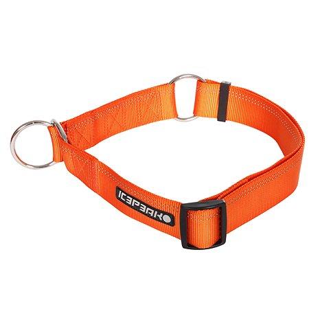 Ошейник для собак ICEPEAK PET S Оранжевый 470101300B450S
