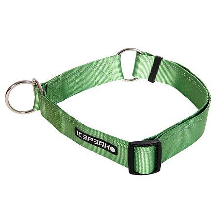 Ошейник для собак ICEPEAK PET M Зеленый 470101300B550M