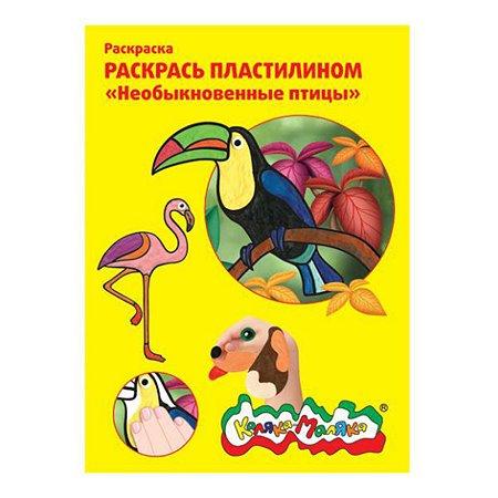 Раскраска пластилином А4 КАЛЯКА МАЛЯКА Необыкновенные птицы 4 штуки