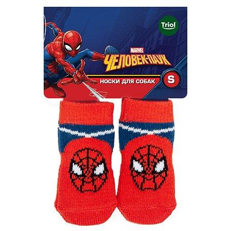 Носки для животных Triol Disney Marvel Человек-паук S 12231030