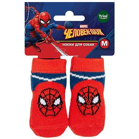 Носки для животных Triol Disney Marvel Человек-паук M 12231031