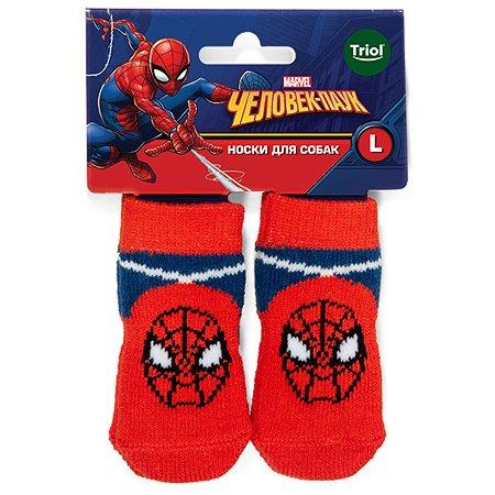 Носки для животных Triol Disney Marvel Человек-паук L 12231032