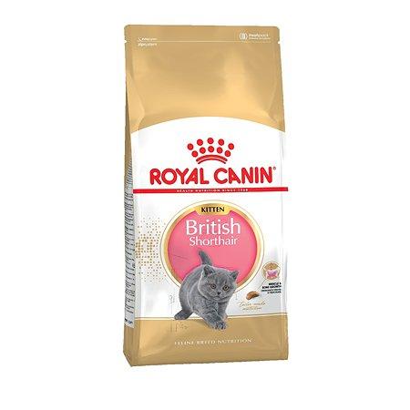 Корм сухой для котят ROYAL CANIN British Shorthair 10кг породы британской короткошерстной