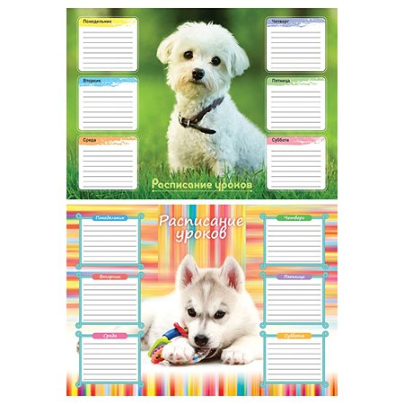 Расписание уроков А4 Спейс Собачки