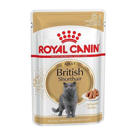 Корм влажный для кошек ROYAL CANIN British Shorthai 85г соус британской короткошерстной породы с 12месяцев