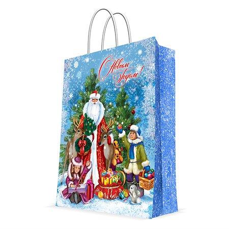 Пакет бумажный Magic Time Дед Мороз и мальчик