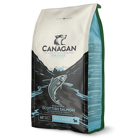 Корм для собак Canagan мелких пород Шотландский лосось 2кг