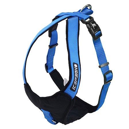 Шлейка для собак ICEPEAK PET M Синий 470302304B350M