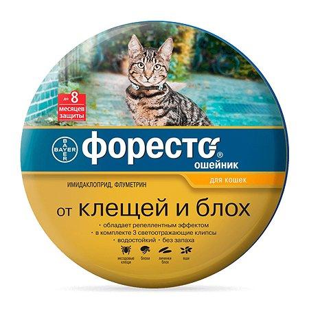 Ошейник для кошек BAYER Foresto от блох и клещей защита 8месяцев 38см 41112