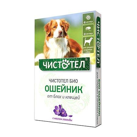 Ошейник для собак Чистотел Био средних и крупных пород с лавандой 65см 42500