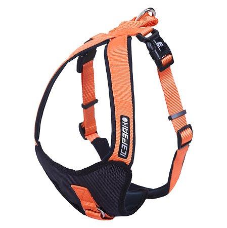 Шлейка для собак ICEPEAK PET M Оранжевый 570302304B450M