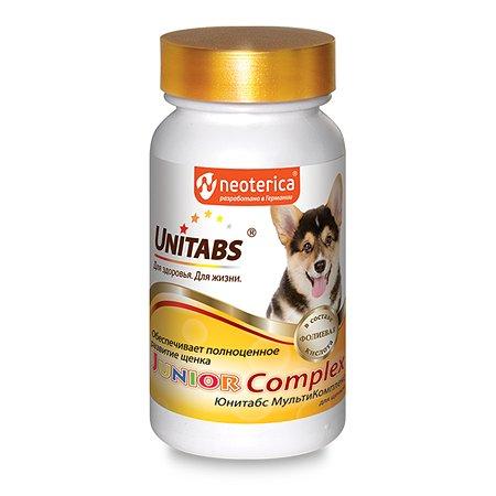 Витамины для щенков Unitabs Junior Complex c B9 100таблеток