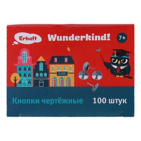 Кнопки чертёжные Erhaft 100шт MF0510-100