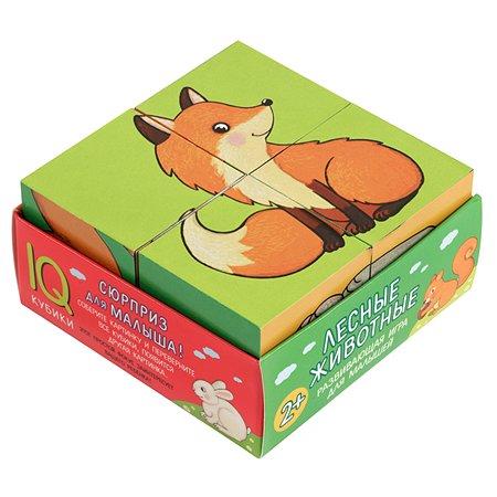 Пособие Айрис ПРЕСС Умные кубики в поддончике 4шт Лесные животные