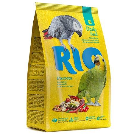 Корм для крупных попугаев RIO основной 500г 20563