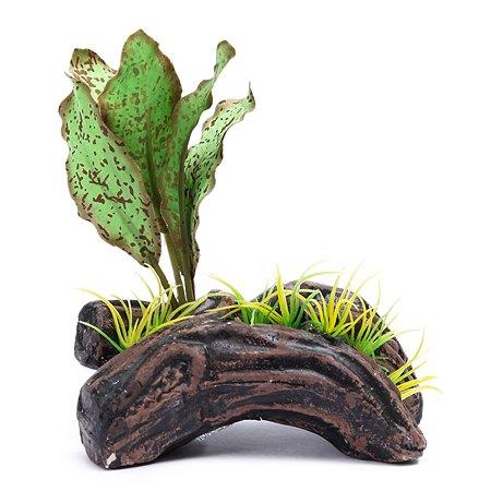 Распылитель PennPlax Растение на бревне Зеленый декоративный PS114