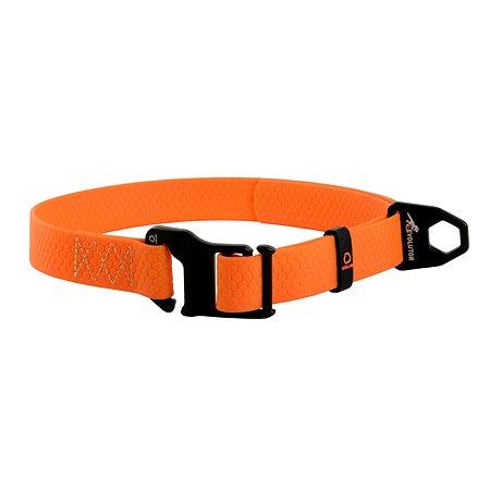 Ошейник для собак Evolutor Оранжевый 42434