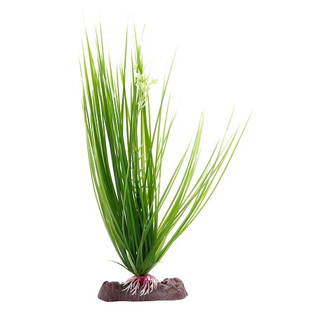 Растение PennPlax Hairgrass с грузом 27см Зеленое P16LH