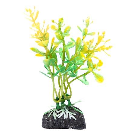 Растение PennPlax Moneywort с грузом 9см Оранжево-Зеленое PPBT12
