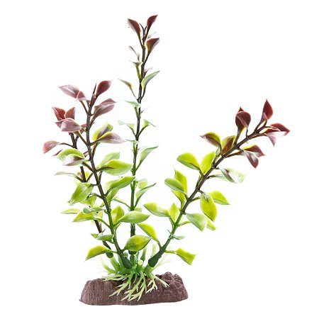 Растение PennPlax Red Blooming Ludwigia с грузом 18см P12RSH