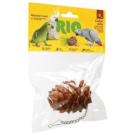 Лакомство для птиц RIO Кедровая шишка 49444