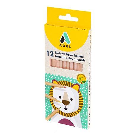 Карандаши цветные Adel шестигранные корпус без покраски 12шт 2112319001