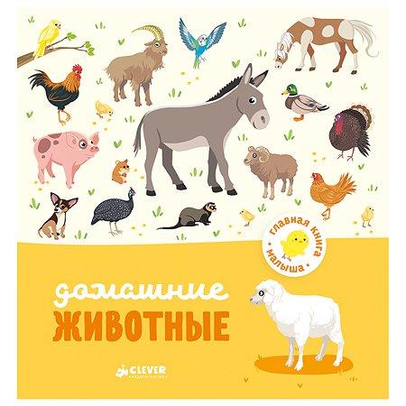 Книга Clever ГКМ.Главная книга малыша. Домашние животные/Бессон А.