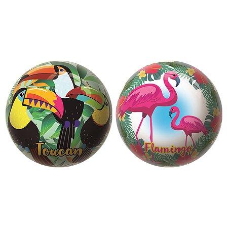 Мяч Unice Экзотические птицы в ассортименте Un 1415