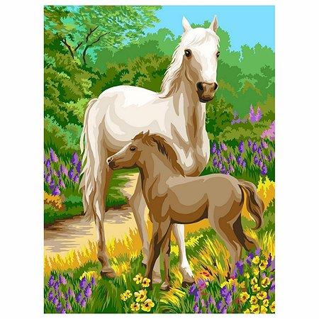 Набор для рисования Attivio Картина по номерам Лошади DM013
