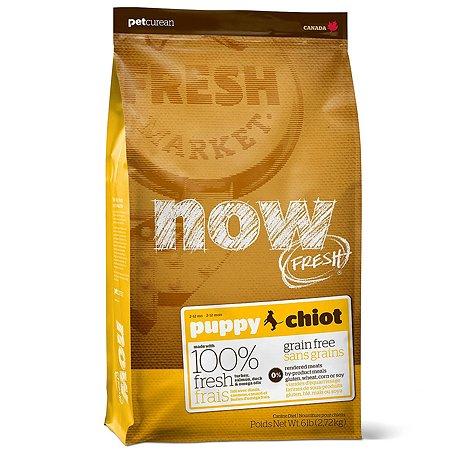 Корм для щенков Now Fresh беззерновой с индейкой уткой и овощами сухой 2.72кг