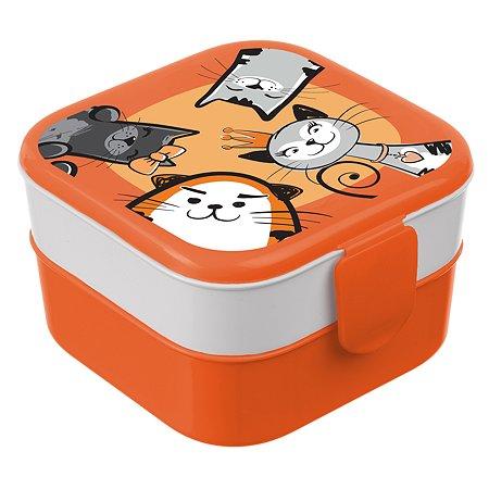 Контейнер для обеда IDEA Кошки М 1232