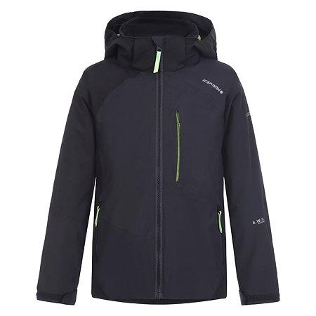Куртка Icepeak серая