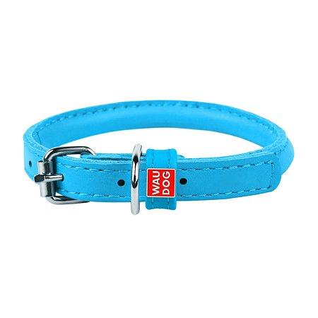 Ошейник для собак Waudog Glamour круглый малый Синий 22402