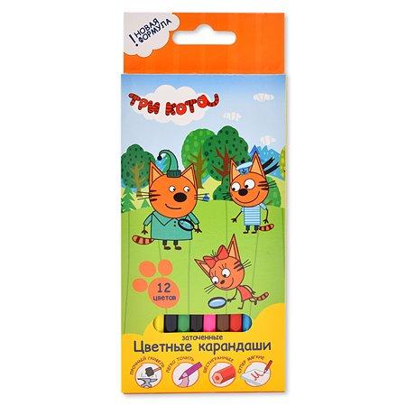Карандаши цветные Kinderline Три кота 12цветов CTEB-US1-1P-12