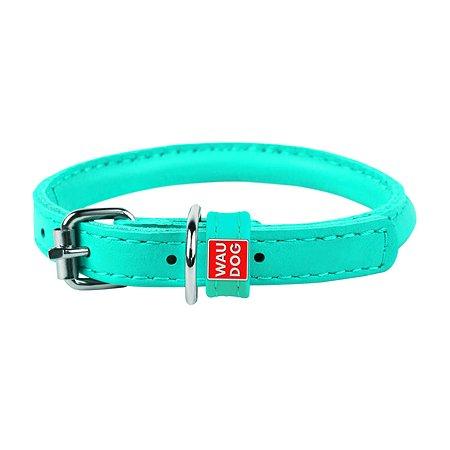 Ошейник для собак Waudog Glamour круглый средний Ментоловый 224113