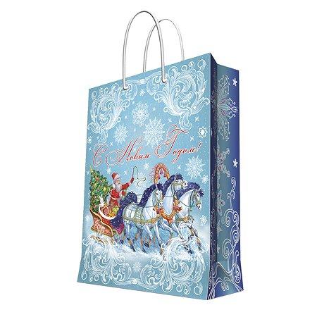 Пакет бумажный Magic Time Дед  Мороз на тройке